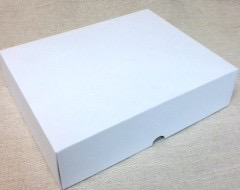 iPad Box Matte white (Versions 1-4) with power supply & leads